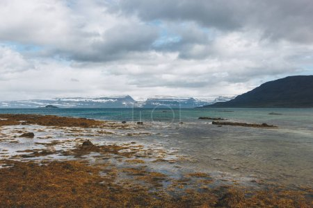 scenic shot of lake shore in Iceland with snowy mountains on background