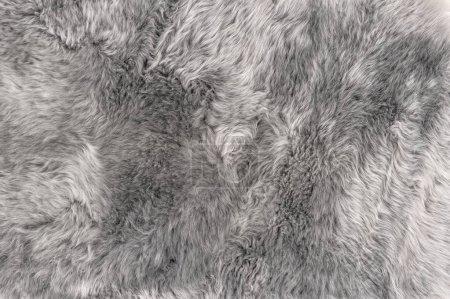 Sheep fur Natural grey sheepskin rug background texture