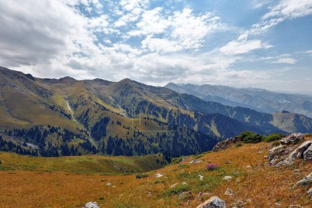 Photo for View of beautiful mountains with green trees - Royalty Free Image