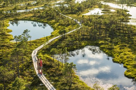 aerial view of couple in love standing on wooden bridge together
