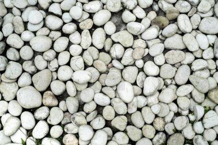 Photo pour Texture caillou sale pierre. Fond de pierres de mer grises - image libre de droit