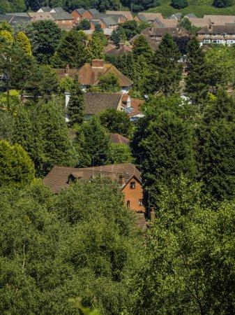 Photo pour Vue sur la banlieue anglaise avec des arbres - image libre de droit