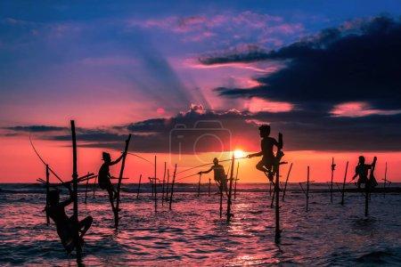Photo for Traditional stilt fisherman in Sri Lanka - Royalty Free Image