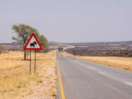 Photo pour Signalisation routière sur les éléphants - image libre de droit