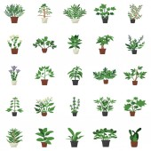 Indoor decor plants flat icons designs pack is here to make your project more eye soothing Editable icons are more attractive and easy to use Enjoy downloading!