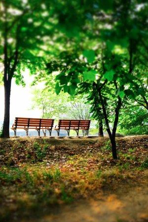 Foto de Una imagen del Banco en el Parque. - Imagen libre de derechos