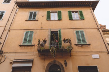 Photo for One balcony with plants on ancient house with windows, Pisa, Italy - Royalty Free Image