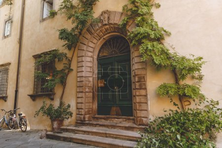 big ancient door with plants in old city, Pisa, Italy