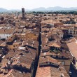 Aerial view of ancient roofs of old city, Pisa, It...