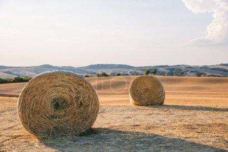Foto de Vista panorámica de campos hermosos de Tuscany y balas de heno, Italia - Imagen libre de derechos