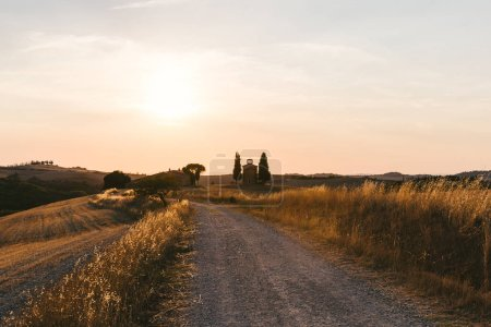 Photo for Scenic view of beautiful Tuscany fields and empty road at sunset, Italy - Royalty Free Image