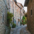 Scenic view of narrow street with buildings made o...