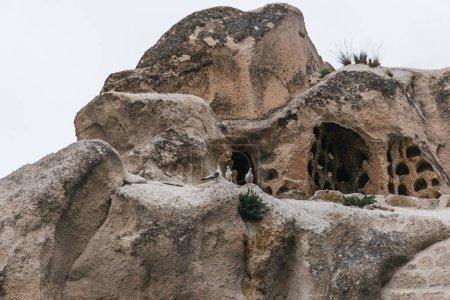 Foto de Hermosas cuevas en piedra arenisca de goreme en el Parque Nacional, cappadocia, Turquía - Imagen libre de derechos