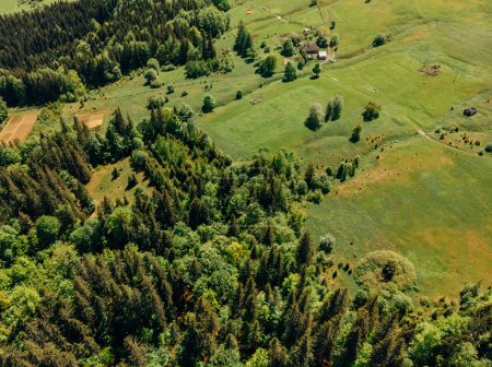 aerial view of forest and fields in arezzo province, Italy