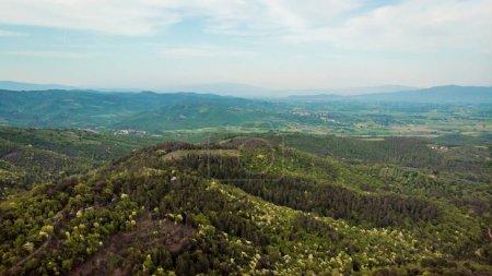 vue aérienne de collines verdoyantes avec des arbres dans la province d'arezzo, Italie