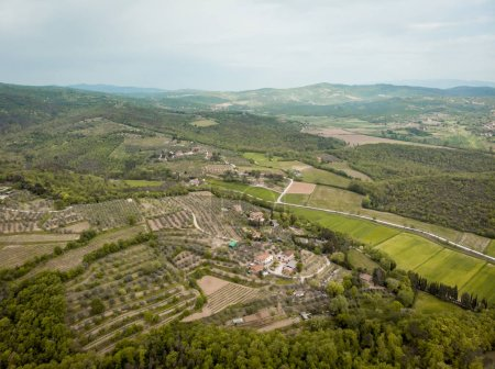 aerial view of fields and hills with trees in arezzo province, Italy