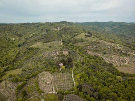 aerial view of fields and hills in arezzo province, Italy