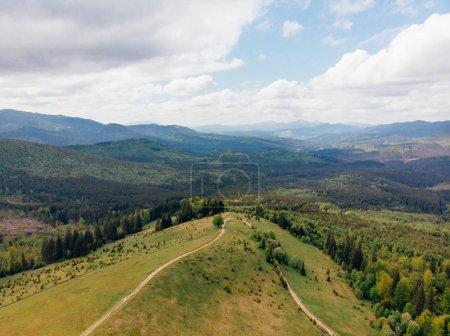 vue aérienne de champs verdoyants, des arbres et des collines dans la province d'arezzo, Italie