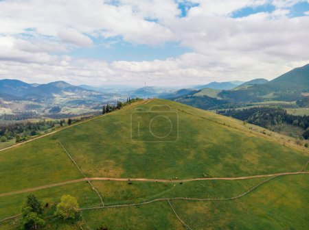 aerial view of green fields and hills in arezzo province, Italy