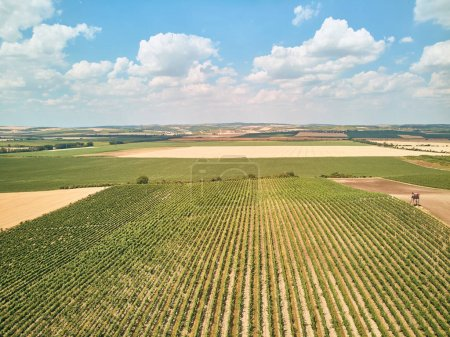Photo for Aerial view of fields and blue sky with clouds, Czech Republic - Royalty Free Image