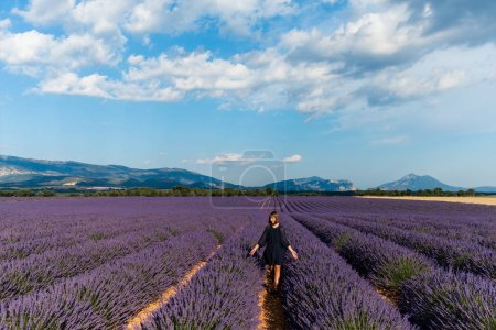 Photo for Girl walking between rows of blooming lavender flowers in provence, france - Royalty Free Image