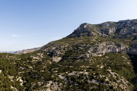 majestic rocky mountains and green vegetation in provence, france