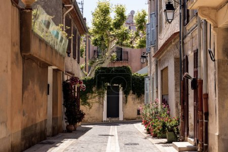 Photo for Cozy narrow street with traditional houses and blooming flowers in pots, provence, france - Royalty Free Image