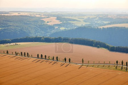 aerial view of beautiful orange fields with harvest, hills and road in Bad Schandau, Germany