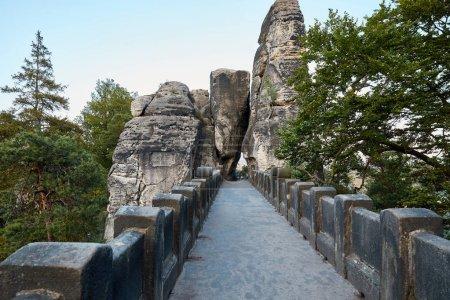 Photo pour Pont en pierre, vieux rochers et forêt à Bastei, Allemagne - image libre de droit