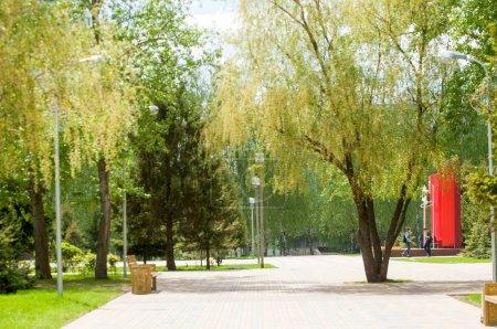 Photo pour La zone du parc de la ville. Une pelouse verte, des arbres et des sentiers. - image libre de droit
