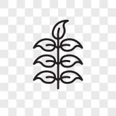 Rowan vector icon isolated on transparent background Rowan logo