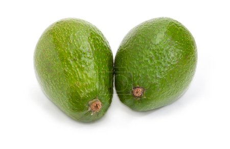 Two whole green-skinned pear-shaped avocado fruit on a white background