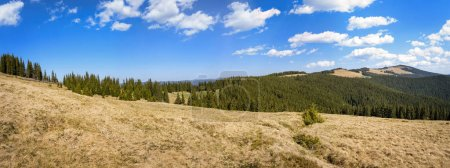 Montagnes carpatiennes paysages d'été, vaste panorama