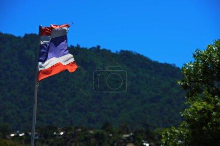 Photo pour Drapeaux agitant dans la forêt tropicale - image libre de droit