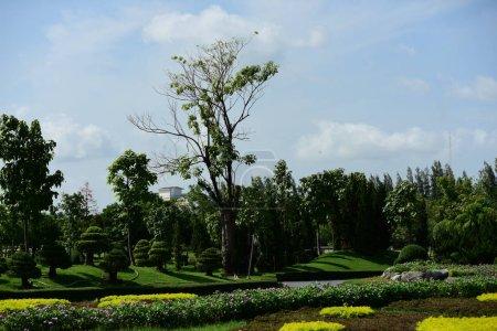 Photo pour Jardin formel de printemps. Beau jardin de fleurs colorées.Paysager Jardin formel. Park. Beau jardin. - image libre de droit