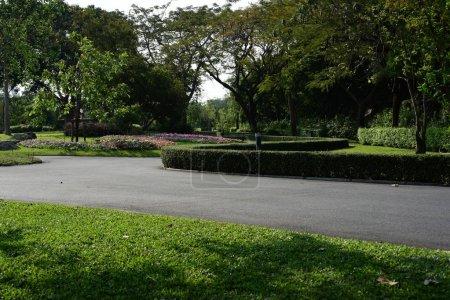 Photo pour Vue panoramique d'un parc ensoleillé avec une végétation luxuriante - image libre de droit