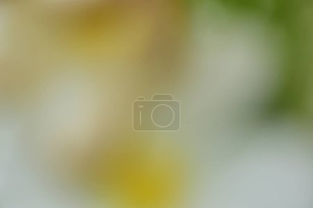 Photo for Abstract blurred background, copy space - Royalty Free Image