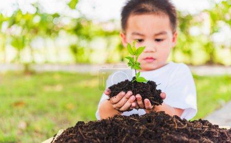 Foto de Día Mundial del Medio Ambiente Concepto de Medio Ambiente, Mano de Asiático lindo niño alegre sosteniendo un árbol joven en suelo negro listo para planificar en el fondo del jardín verde - Imagen libre de derechos