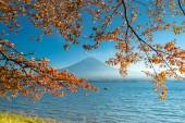 """Постер, картина, фотообои """"Гора Фудзи Просмотрели от озера Кавагутико в Японии осенью приправа"""""""
