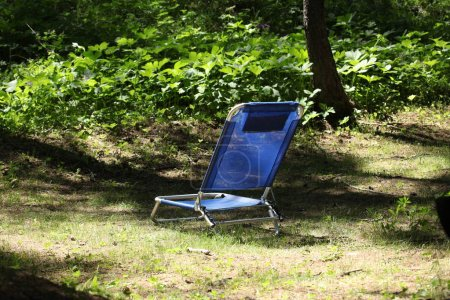 Photo pour Fauteuil inclinable bleu dans un bois avec espace de copie pour votre texte - image libre de droit