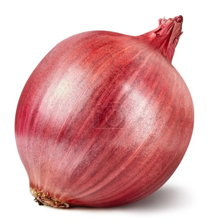 Photo for Onion Isolated on white background Clipping Path - Royalty Free Image