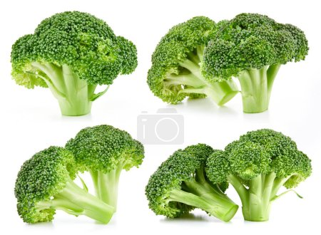 Photo for Raw broccoli collection isolated on white background - Royalty Free Image