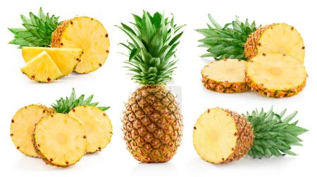 Photo for Pineapple isolated on white background. Pineapple collection. - Royalty Free Image