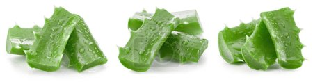 Photo for Aloe vera collection on white background. Aloe vera Clipping Path - Royalty Free Image