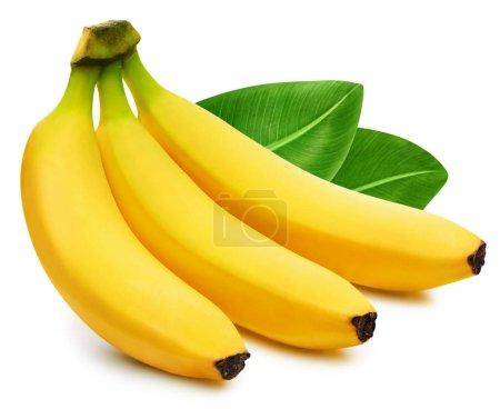 Foto de Hay un montón de bananas aisladas sobre fondo blanco. Hojas de plátanos con recorte - Imagen libre de derechos