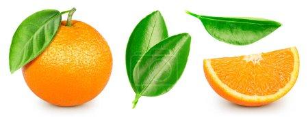 Photo pour Collection fruits orange avec feuilles. Orange isolé sur fond blanc. Voie de coupe orange . - image libre de droit