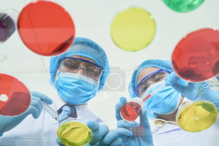 Photo for Doctors in laboratory researching medicine, chemical biotechnology - Royalty Free Image