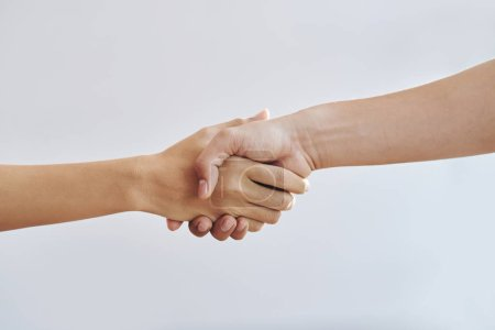 Photo for Close-up image of man and woman shaking hands - Royalty Free Image