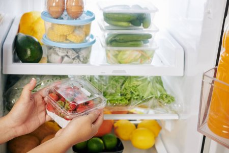 Photo for Hands of housewife putting package of strawberries in refrigerator full of groceries she ordered online - Royalty Free Image