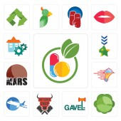 Set Of 13 simple editable icons such as homeopathy cabbage gavel butcher shop aeroplane catering services mars military facility can be used for mobile web UI